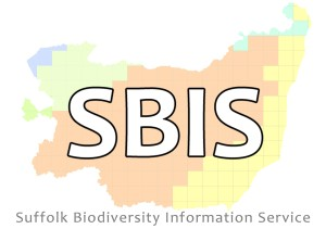 SBIS Logo (with Tag)